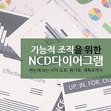 기능적 조직을 위한 NCD다이어그램